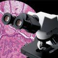 میکروسکوپ و دوربین cx31