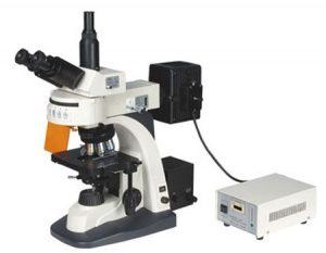 میکروسکوپ فلورسنت